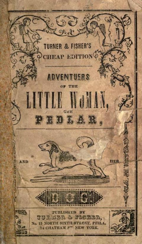 Adventures of the Little Woman